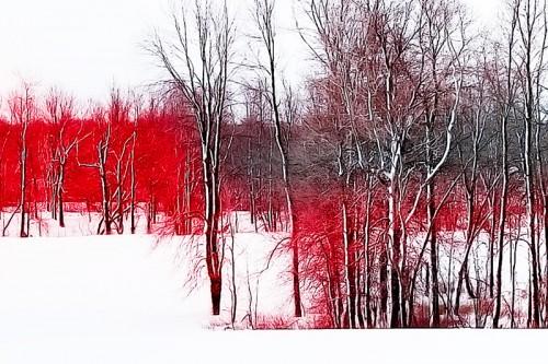 L'orée du bois rouge. Zoom détail.
