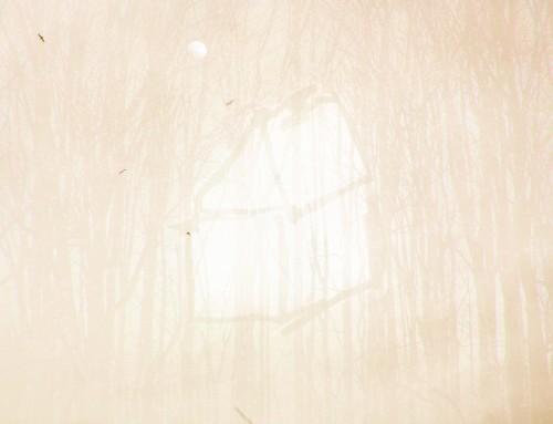 Projet | work Une vie en camouflage – beige doré