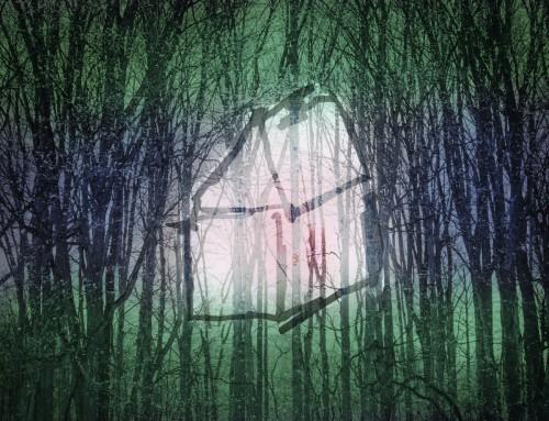 Une vie en camouflage – vert